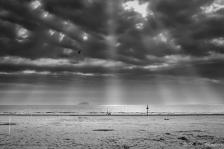 Weston Rays